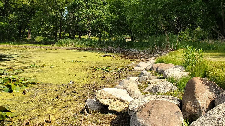 Rocky edge along pond at Veteran Acres Park.
