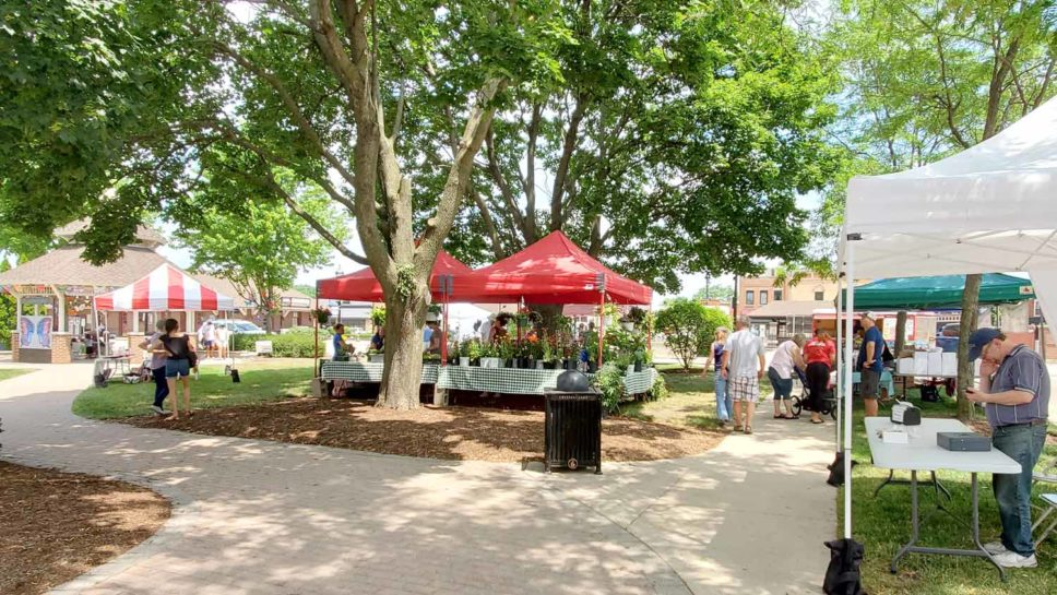 People shopping at the Downtown Crystal Lake Farmers Market.