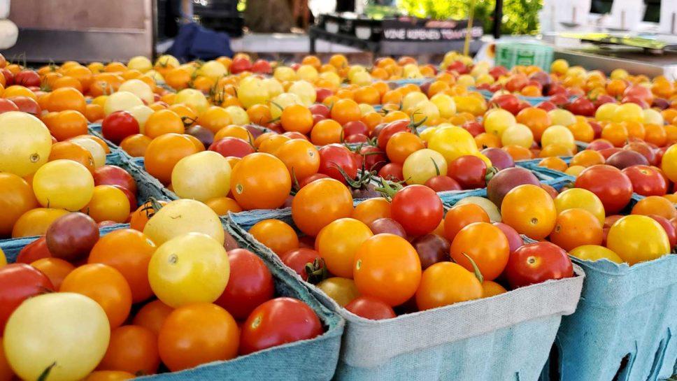 Tiny tomatoes.